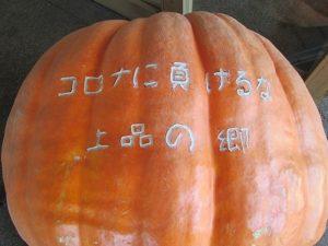 大きなかぼちゃ!!