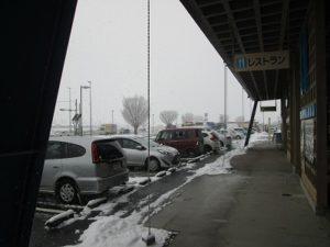 雪の中ありがとうございます。